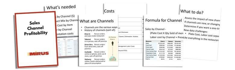 Sales Channel Profitability Presentation by Mirus